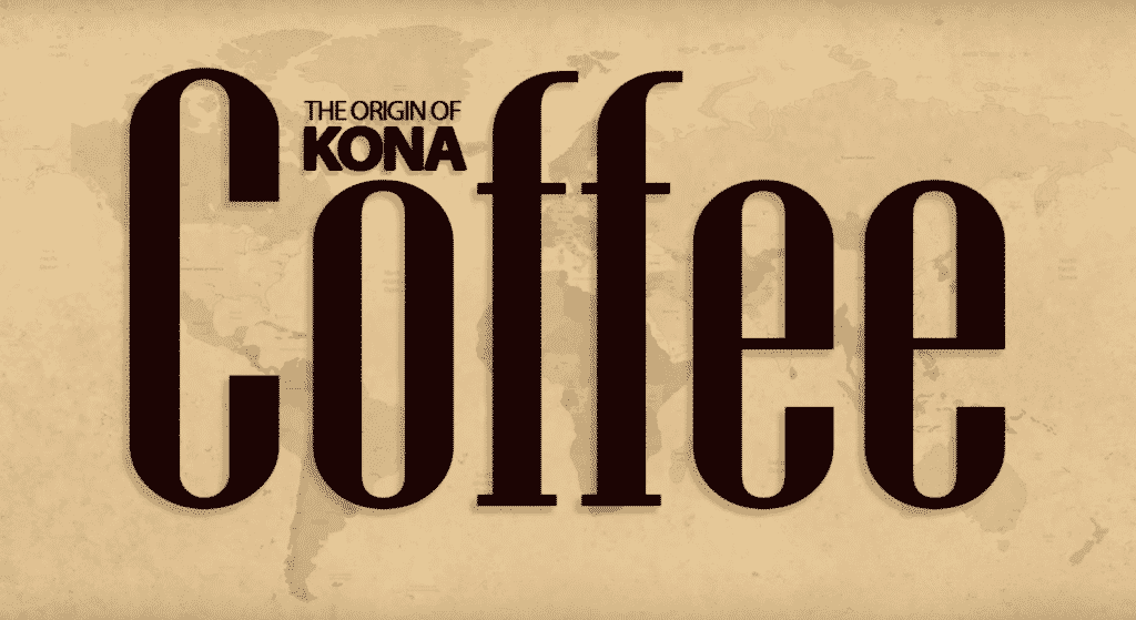 Kone Coffee tour